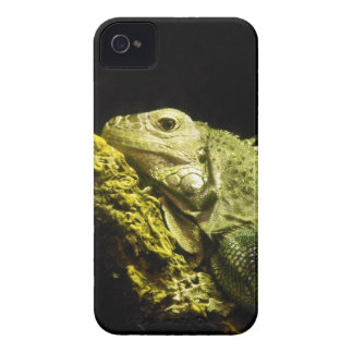Noble Iguana BlackBerry Bold Case-Mate iPhone 4 Covers