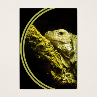 Noble Iguana Business Card