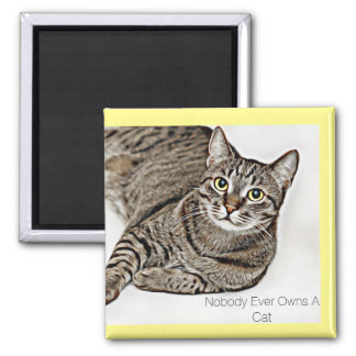 """Nobody Ever Owns A Cat"" Tabby Cat 