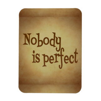 NOBODY IS PERFECT QUOTE TRUISM MOTIVATIONAL REALIT MAGNET