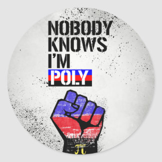 Nobody Knows I'm Poly - - LGBTQ Rights -  Classic Round Sticker