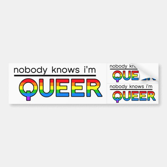 """Nobody Knows I'm Queer"" Decal (3-in-1)"