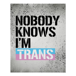 Nobody Knows I'm Trans - - LGBTQ Rights -  Poster