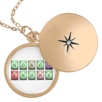 nobody knows in chemical elements locket necklace