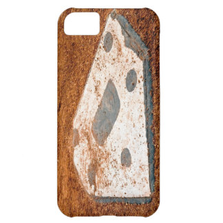 nobody's coming home iPhone 5C covers