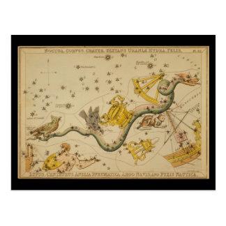 Noctua, Corvus, Hydra, Felis, Lupus, Centaurus, &c Postcard