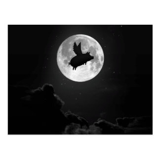 nocturnal flying pig postcard