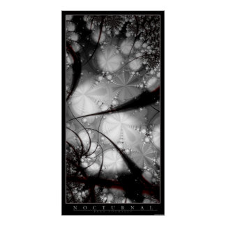 Nocturnal Poster