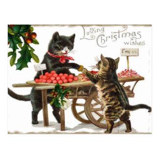 Noël affectueux du chat vintage souhaite la carte  carte postale