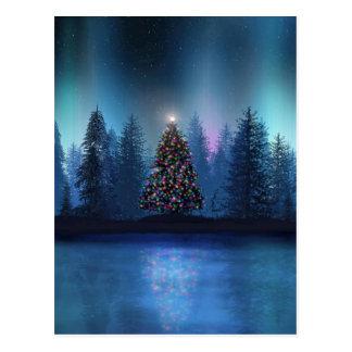 Noël de Borealis de l'aurore Carte Postale