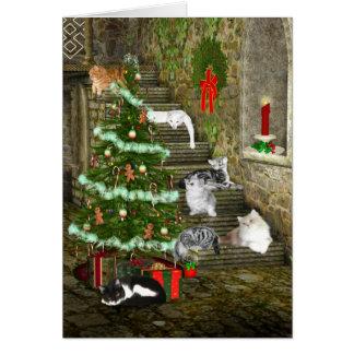 Noël de chat carte de vœux
