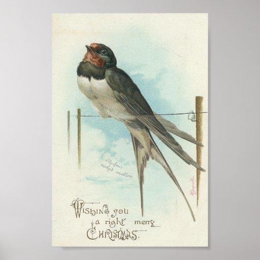 Noël de cru d'hirondelle de grange posters