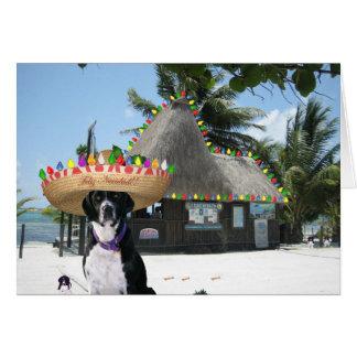 Noël de Mexicain de Chrysie Carte De Vœux
