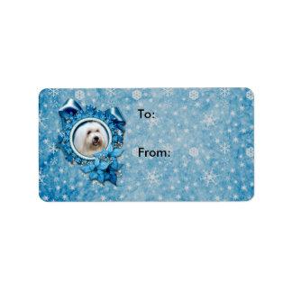 Noël - flocon de neige bleu - coton de Tulear Étiquette D'adresse