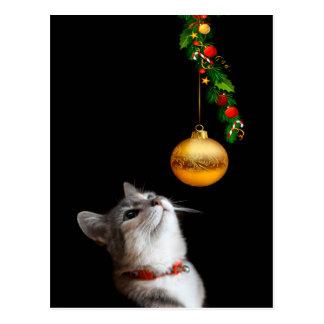 Noël tenté de chat de minou cartes postales