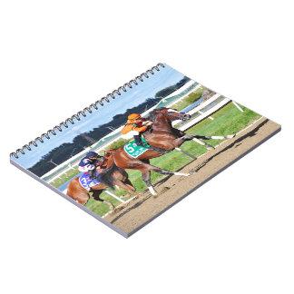 Noholdingback Bear - Gallant Bob Stakes Note Book