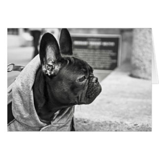 Noir Hood Life Frenchie Card