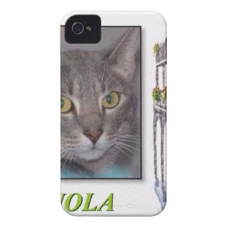 NOLA iPhone 4 CASES