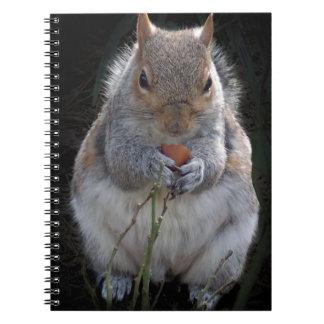 nom nom nom nom nuts notebook