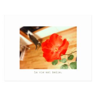 non-chan postcard