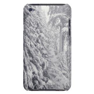 Nooksack River, Washington iPod Case-Mate Cases