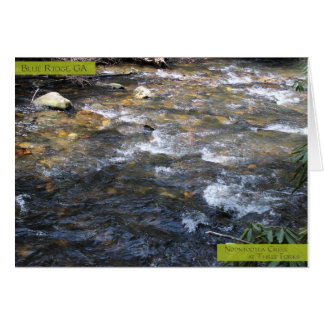 Noontootla Creek Card-01 Card
