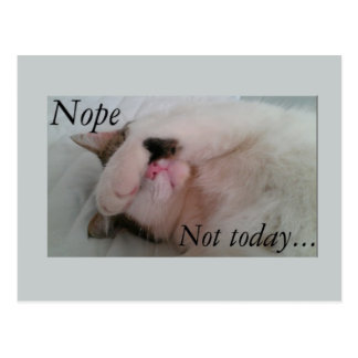 """Nope not today"" sleepy cat hiding eyes Postcard"