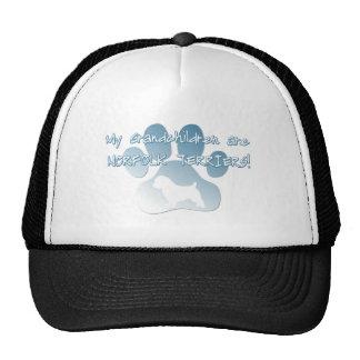 Norfolk Terrier Grandchildren Mesh Hat