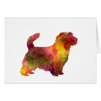 Norfolk Terrier in watercolor Card