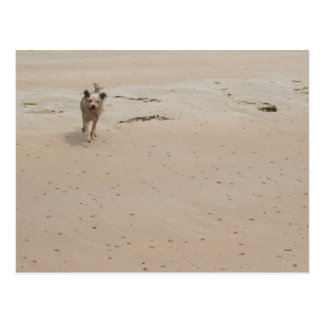 Normandy 2009 (1) postcard