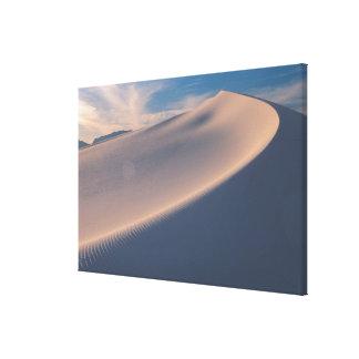 North America, America, New Mexico, White 2 Gallery Wrap Canvas