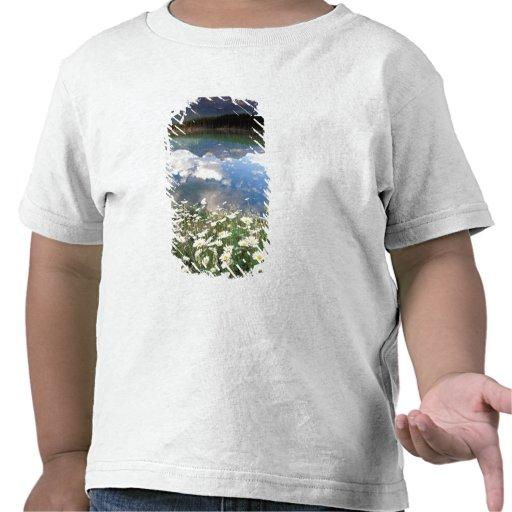 North America, Canada, Alberta, Banff National 2 T Shirt