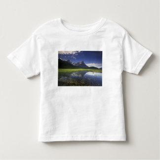 North America, Canada, Alberta, Banff National Tee Shirts