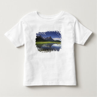North America, Canada, Alberta, Banff National Toddler T-shirt