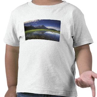 North America, Canada, Alberta, Banff National Tshirts