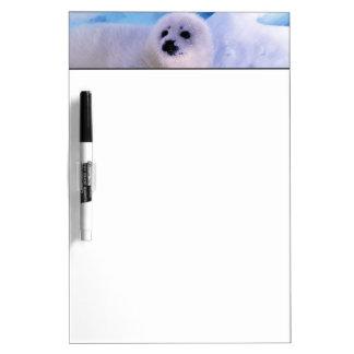 North America, Canada, Gulf of St. Lawrence. 2 Dry-Erase Board
