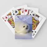 North America, Canada, Gulf of St. Lawrence. 4 Playing Cards