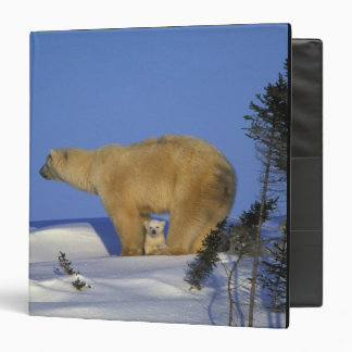 North America, Canada, Manitoba, Churchill. 10 3 Ring Binders