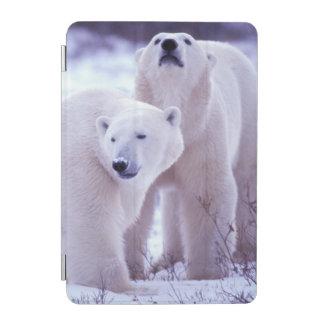 North America, Canada, Manitoba, Churchill. 2 iPad Mini Cover