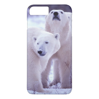 North America, Canada, Manitoba, Churchill. 2 iPhone 7 Plus Case