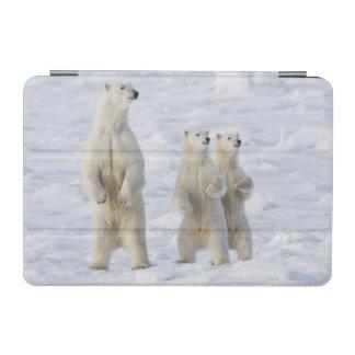 North America, Canada, Manitoba, Churchill. 5 iPad Mini Cover