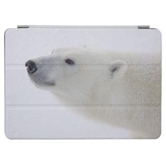 North America, Canada, Manitoba, Churchill. 6 iPad Air Cover