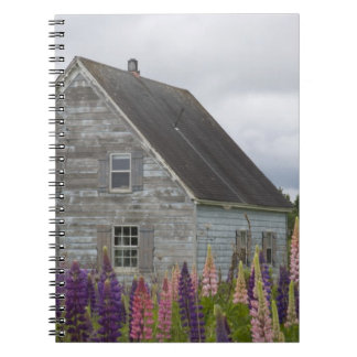 North America, Canada, Prince Edward Island, Notebooks