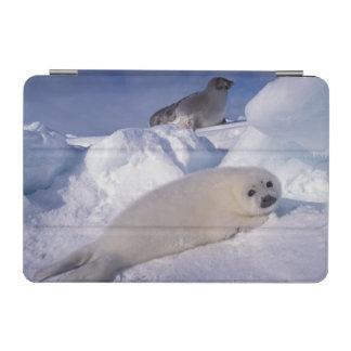 North America, Canada, Quebec, Iles de la 2 2 iPad Mini Cover