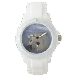 North America, Canada, Quebec, Iles de la 2 Wrist Watch