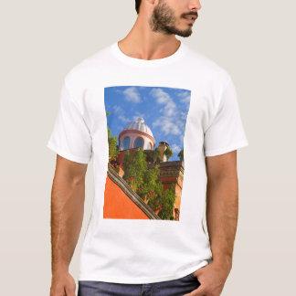 North America, Mexico, Guanajuato state, San 4 T-Shirt