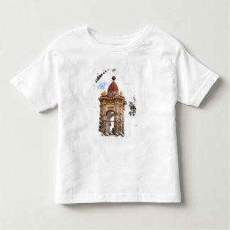 North America, Mexico, Guanajuato state, San 5 Toddler T-shirt