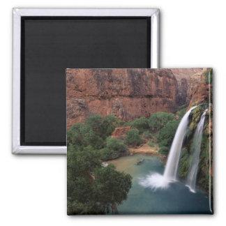 North America, U.S.A., Arizona, Havasu Canyon, Square Magnet