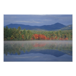 North America, US, NH, Fall reflections in Poster