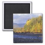 North America, US, NH, Saco River. Cobble Fridge Magnet